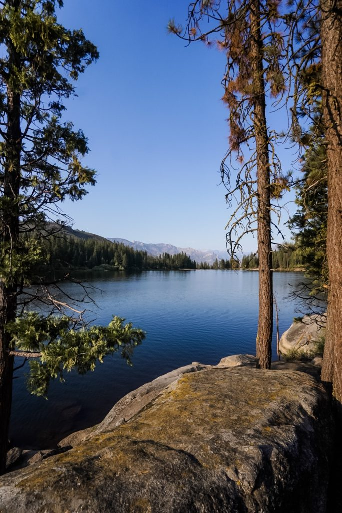 Photo of blue lake with pine trees