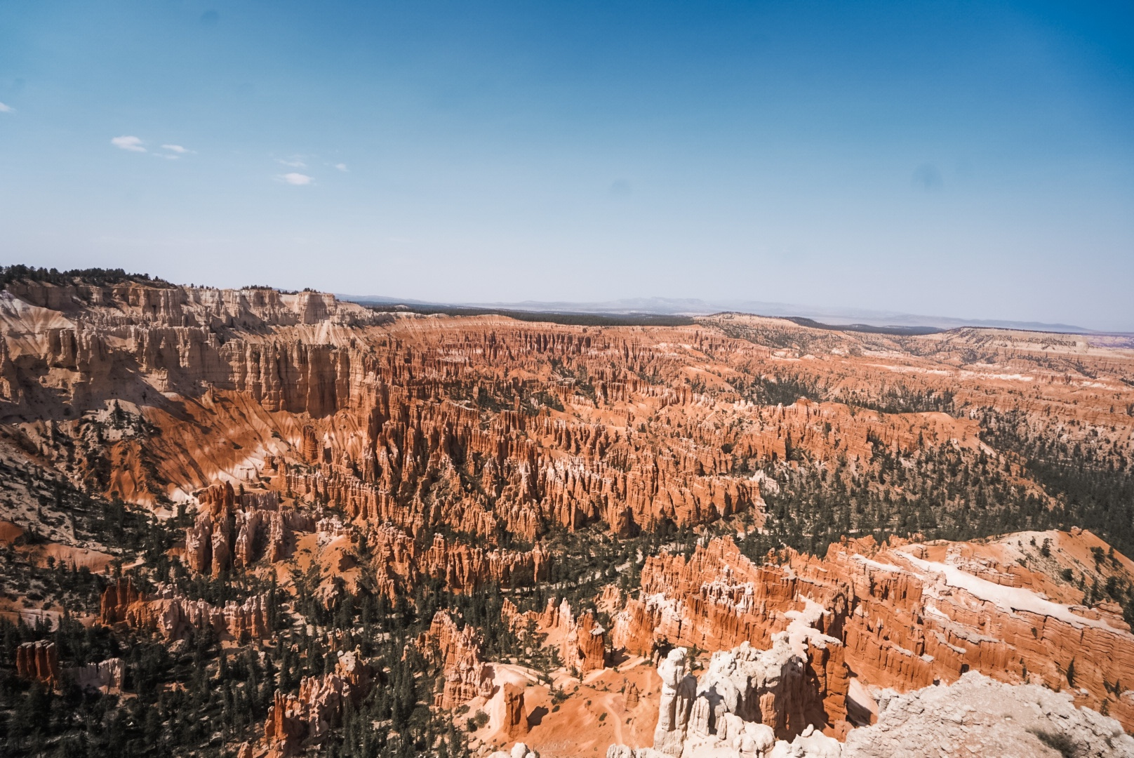 Bryce Canyon - landscape picture of canyon with pine trees